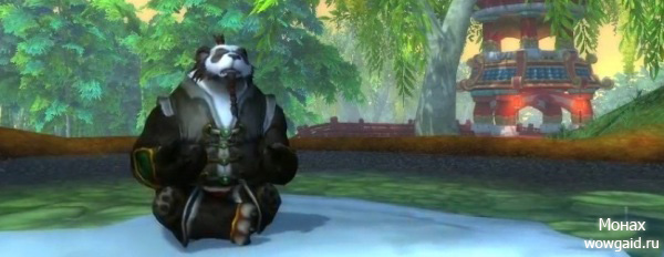 WoW Mists of Pandaria: Монах