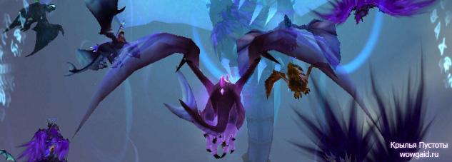 Крылья Пустоты (драконы), репутация с фракцией