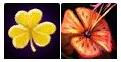 Золотой клевер, Тигровая лилия