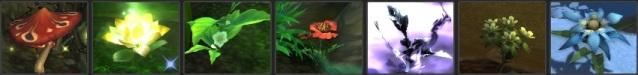 Трава и цветы Травничества Туманы Пандарии WoW